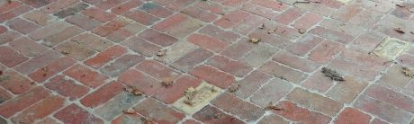 Bricklaying Paving Landscape