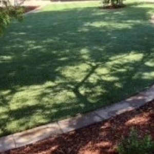 Driveway brick curved grass trees makeover lawn turf laying